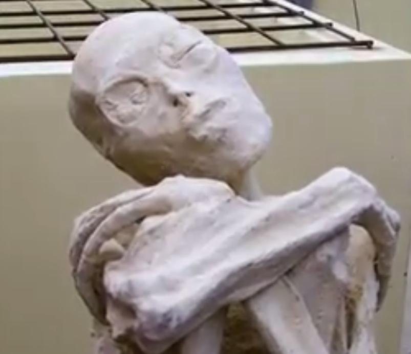 Nazca mummy face