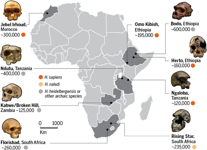 Human evolution across Africa
