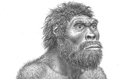 Homo Erectus from Georgia